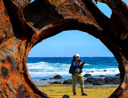 Phillip Island Photograph of the Month